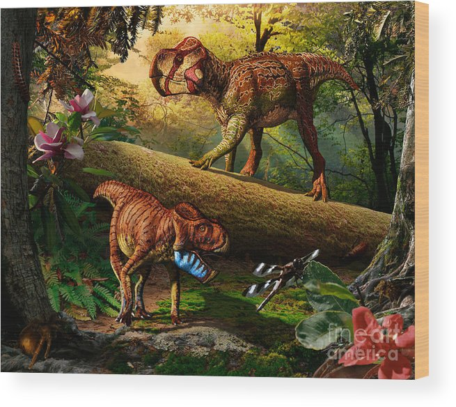 Gryphoceratops Wood Print featuring the digital art Gryphoceratops and Unescoceratops by Julius Csotonyi