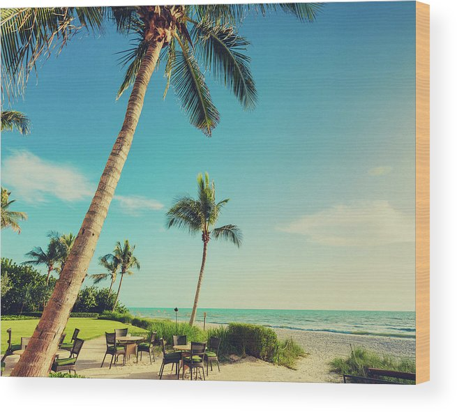 Vacations Wood Print featuring the photograph Naple Beach Palms by Thepalmer