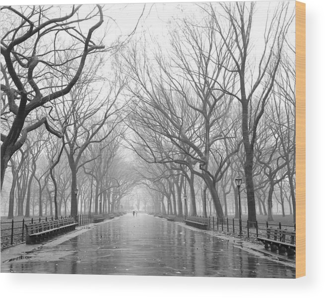 Ny Wood Print featuring the photograph New York City - Poets Walk Central Park by Dave Beckerman