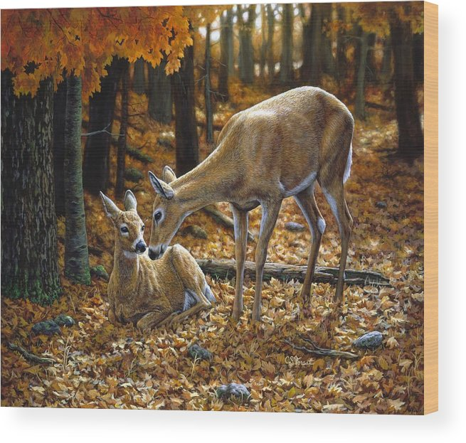 WOODLAND FOREST IN AUTUMN FALL /& YOUNG DEER DOE PAINTING ART REAL CANVAS PRINT