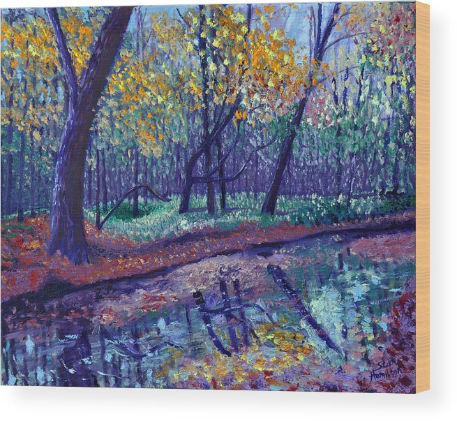Creek Wood Print featuring the painting SEWP Creek by Stan Hamilton