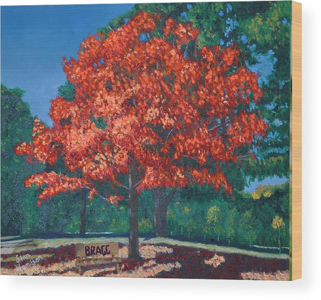 Autumn Fall Trees Wood Print featuring the painting Autumn Tree by Stan Hamilton