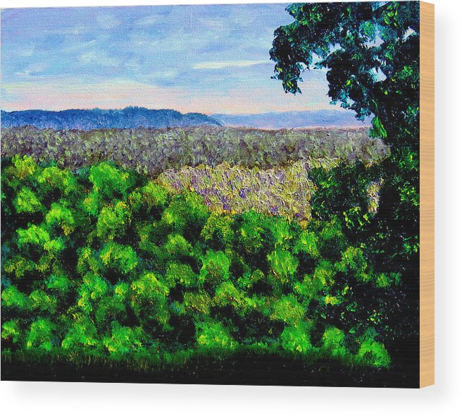 Plein Air Wood Print featuring the painting bcsp Pan by Stan Hamilton