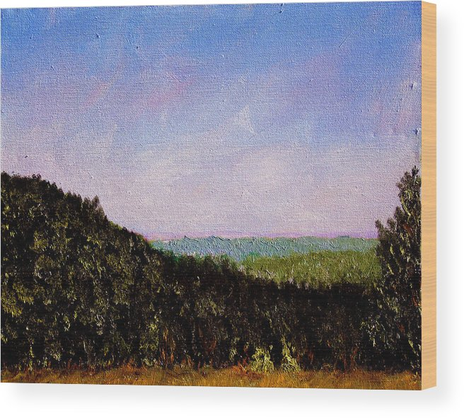 Plein Air Wood Print featuring the painting Bcsp3 by Stan Hamilton