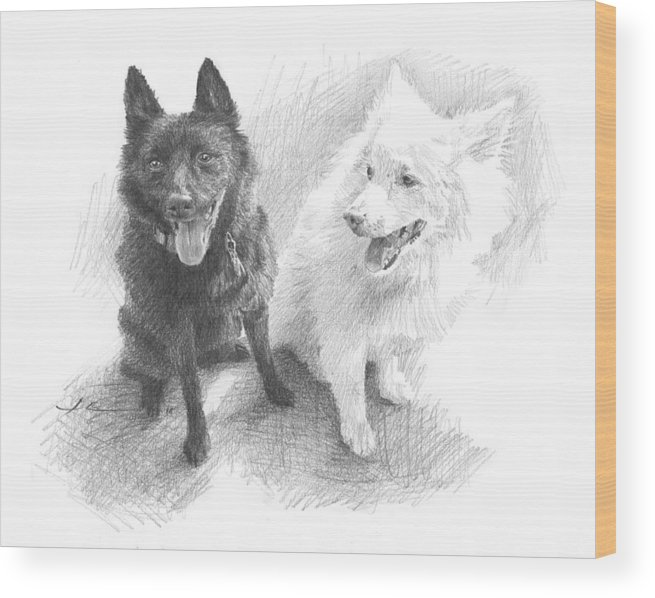 Www.miketheuer.com Black Dog White Dog Drawing Wood Print featuring the drawing Black Dog White Dog Drawing by Mike Theuer