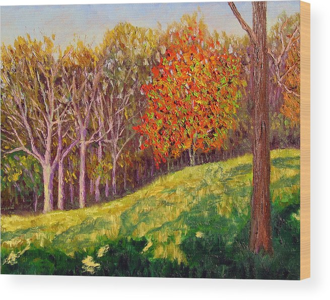 Landscape Wood Print featuring the painting Mooresville 10 11 by Stan Hamilton
