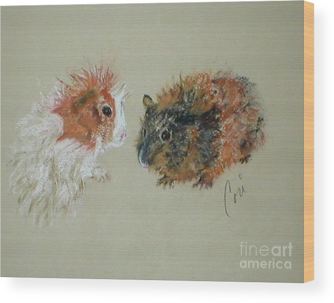 Guineas Wood Print featuring the drawing Two Guineas by Cori Solomon