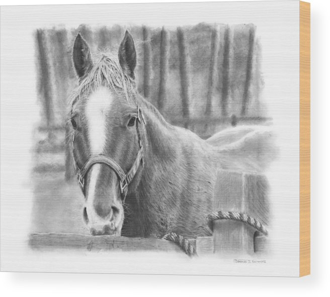 Horse Wood Print featuring the drawing Watching You by Douglas Kochanski