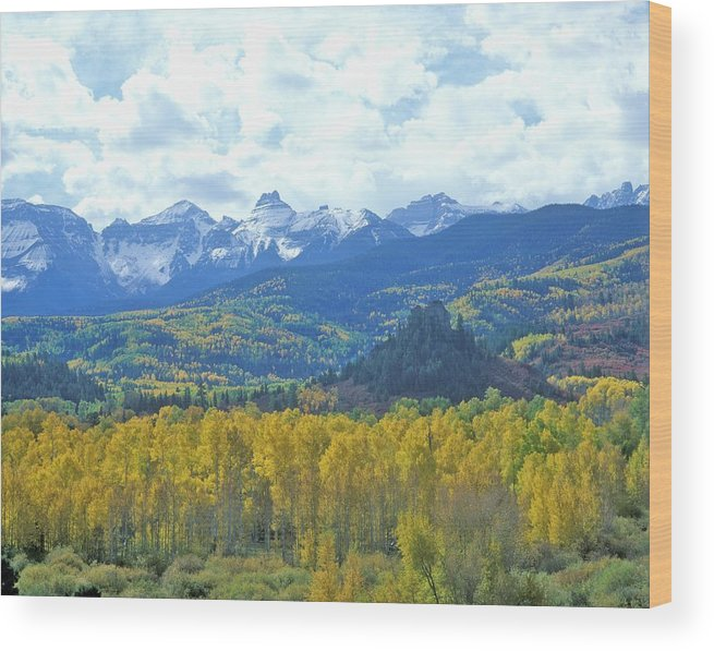 Scenics Wood Print featuring the photograph Autumn Colors In The Sneffels Mountain by Visionsofamerica/joe Sohm