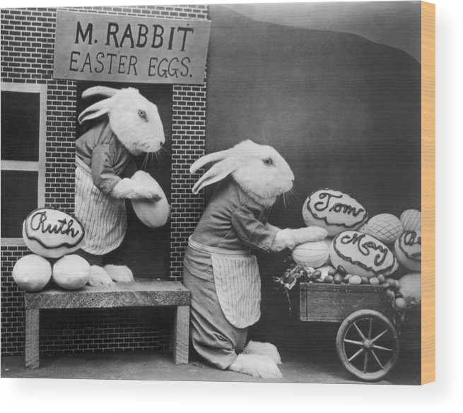 Stuffed Wood Print featuring the photograph Bunny Business by Frees