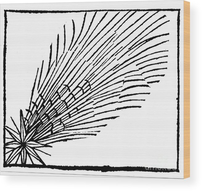 Comet Wood Print featuring the drawing Comet Of 684 Halley, 1493 by Print Collector