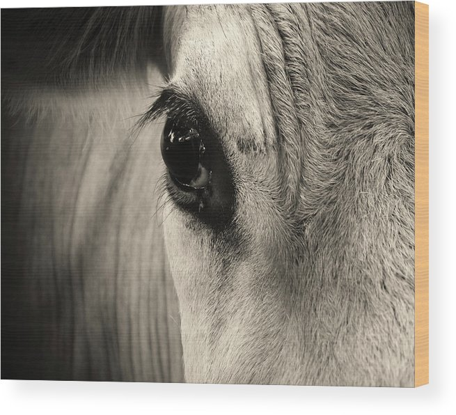 Horse Wood Print featuring the photograph Horse Eye by Karena Goldfinch