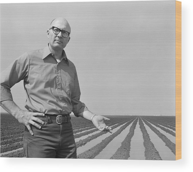 Mature Adult Wood Print featuring the photograph Mature Man Gesturing At Ploughed Field by Tom Kelley Archive