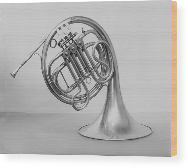 White Background Wood Print featuring the photograph Studio Shot Of French Horn by George Marks