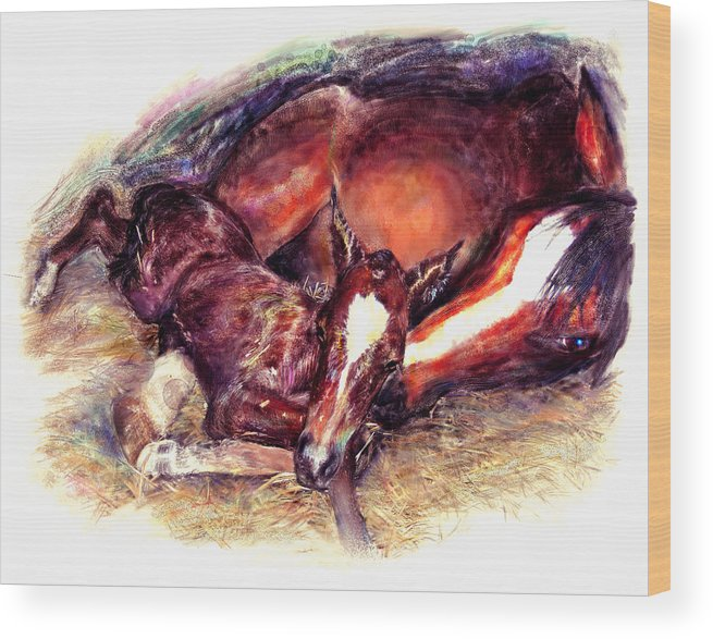 Horse Wood Print featuring the painting Awkward First Meeting Arabian Mare With Newborn Foal by Connie Moses