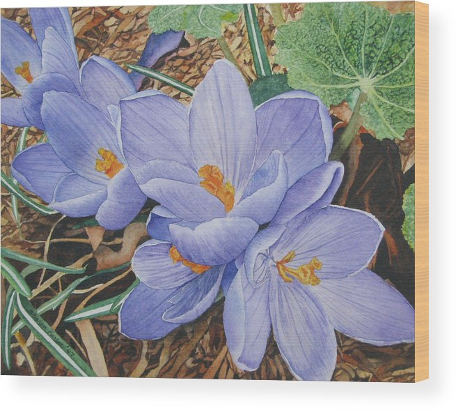 Flower Wood Print featuring the painting Crocus by Sharon Farber