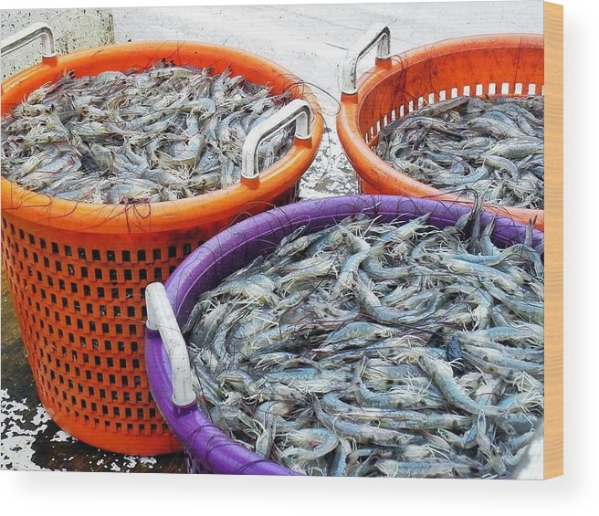 Shrimp Wood Print featuring the photograph Loaves And Fishes by Patricia Greer