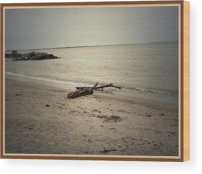 Sea Wood Print featuring the photograph Lonely Seashore by Anandi Godse
