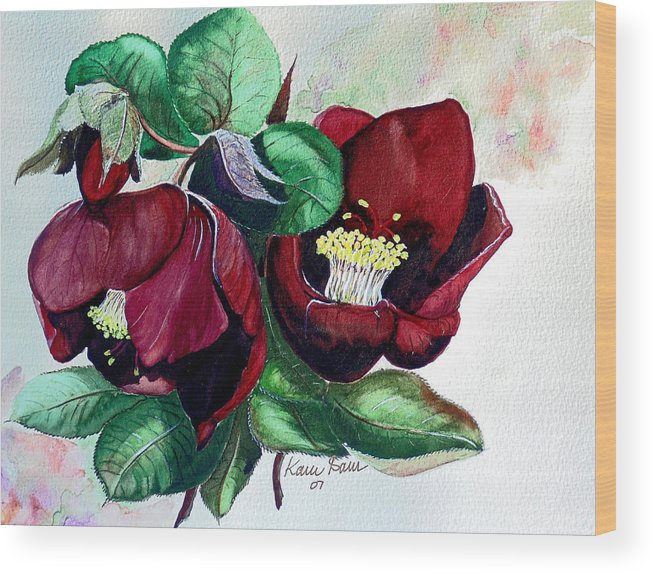 Red Helleborous Painting Flower Painting  Botanical Painting Watercolor Painting Original Painting Floral Painting Flower Painting Red Painting  Greeting Painting Wood Print featuring the painting Red Helleborous by Karin Dawn Kelshall- Best