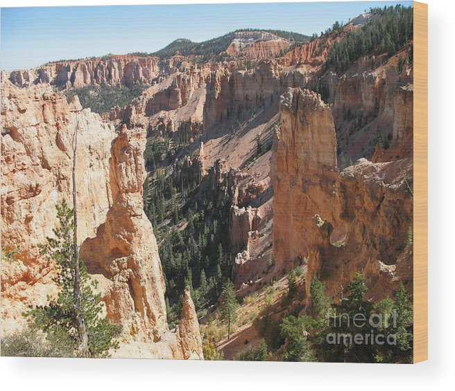 Canyon Wood Print featuring the photograph Rockformation At Bryce Canyon by Christiane Schulze Art And Photography