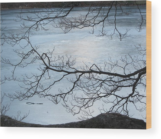 Ice Wood Print featuring the photograph Shimmering Ice by Deborah Flusberg