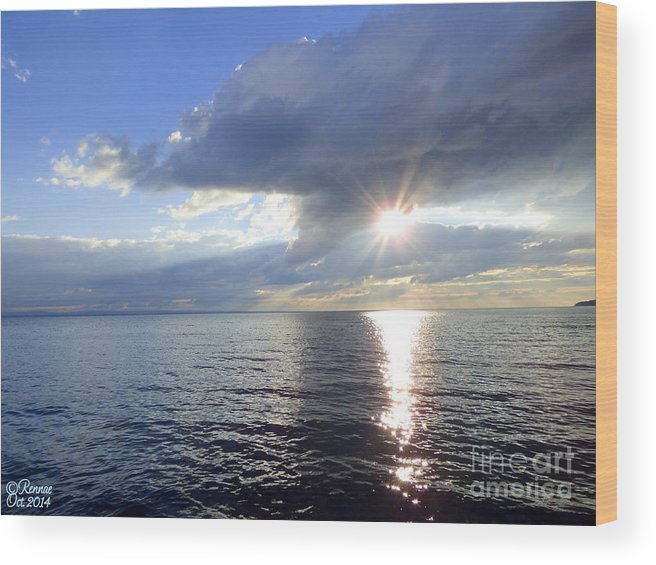 Lake Wood Print featuring the photograph Sunlight Reflections by Rennae Christman