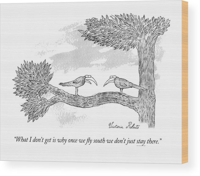 (migrating Bird To Another) Wood Print featuring the drawing Once We Fly South by Victoria Roberts