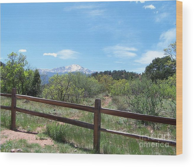 Colorado Wood Print featuring the photograph Crossing the Fence by Jack Norton