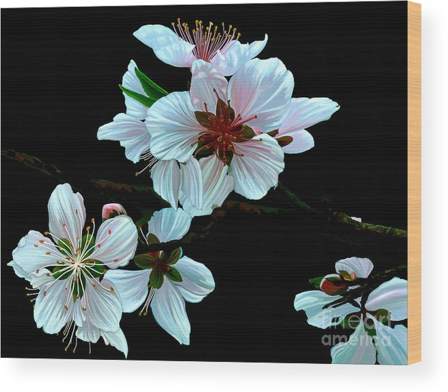 Fine Art Wood Print featuring the painting Just Peachy by Patricia Griffin Brett