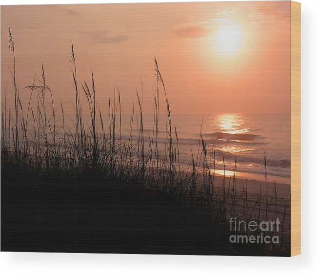 East Cost Wood Print featuring the photograph Beach Sun by Paul Boroznoff