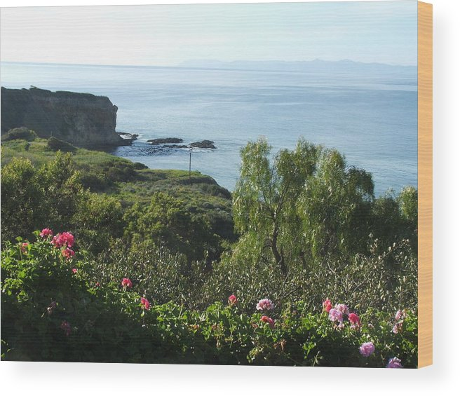 Landscape Wood Print featuring the photograph Breath Of Fresh Air by Shari Chavira