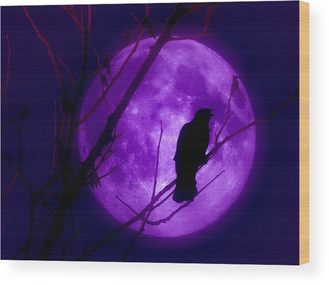 Moon Wood Print featuring the photograph Calling Out To The Night by Kenneth Krolikowski