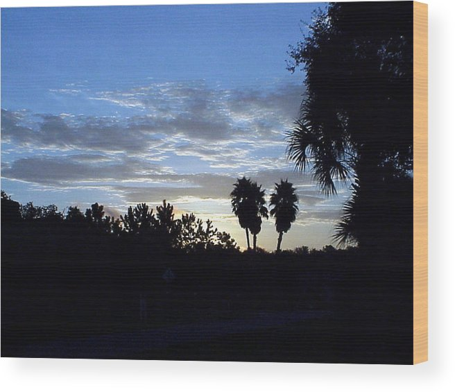Sunrise-sunset Photograph Wood Print featuring the photograph Daybreak in Florida by Frederic Kohli