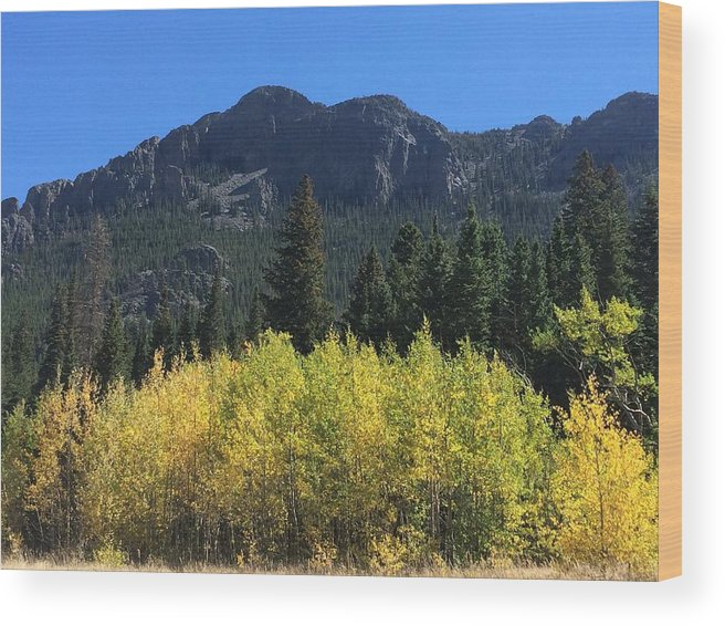 Landscape Wood Print featuring the photograph Fall at Twin Sisters by Kristen Anna
