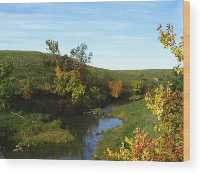 Landscape Wood Print featuring the photograph Firesteel Creek Autumn by Cindy Gregg