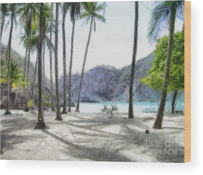 Landscape Wood Print featuring the painting Florida beach by Murphy Elliott
