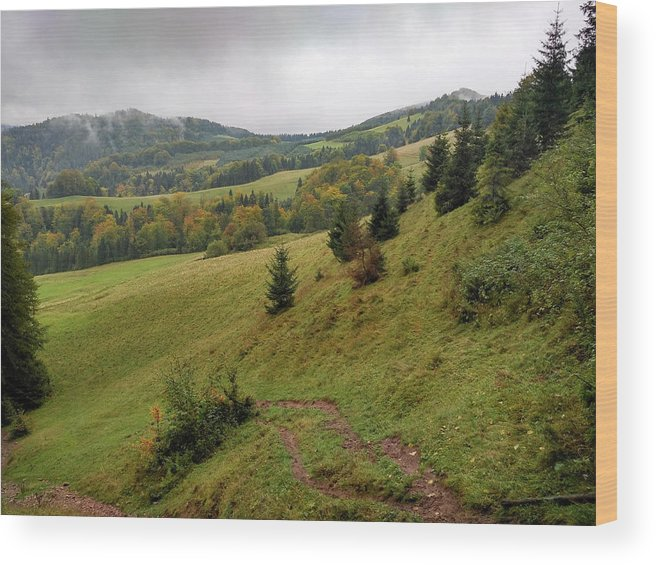 Pieniny Wood Print featuring the photograph Highlands Landscape In Pieniny by Arletta Cwalina