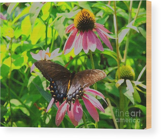 Butterfly Wood Print featuring the photograph In The Upper Garden - One by Judy Waller