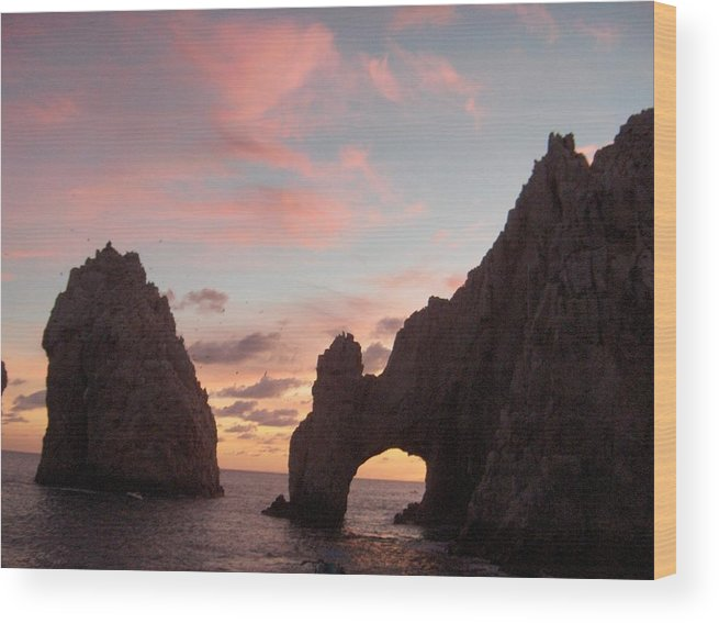 Lands End Wood Print featuring the photograph Lands End by Janet Hall