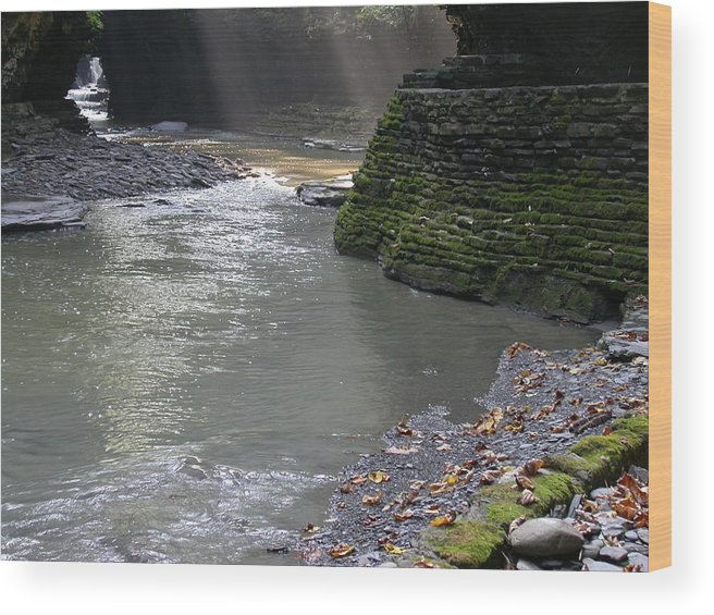 Watkins Glen Wood Print featuring the photograph Little Ray of Sunshine by Linda Murphy