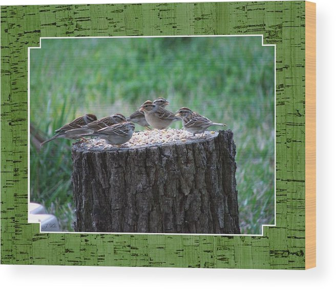 Wren's Wood Print featuring the photograph Lunch Time at the Tree Log Diner by Judy Waller
