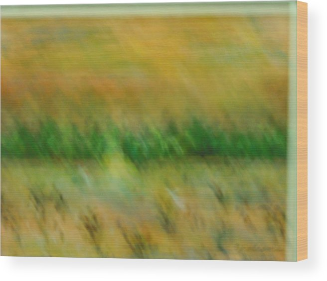 Water Wood Print featuring the painting Morning on the lake with whooping cranes by BJ Abrams