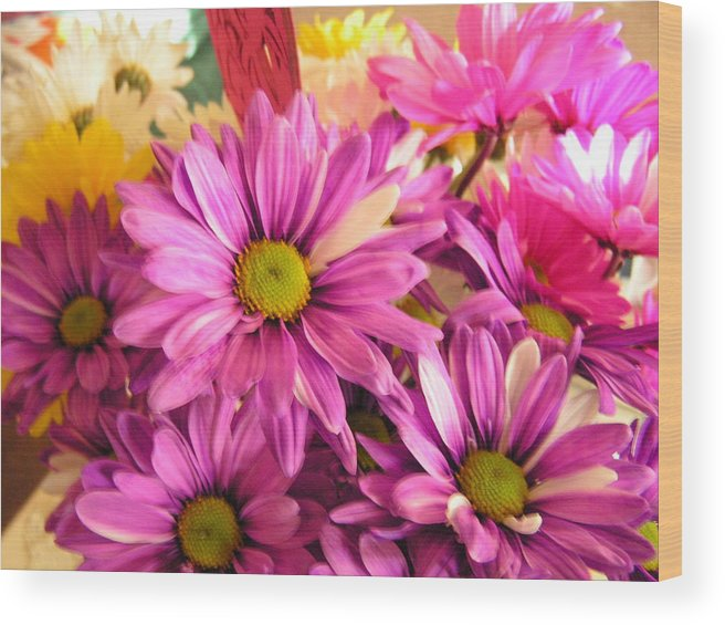 Plants Wood Print featuring the photograph Painted dDisies by Rebecca Marona