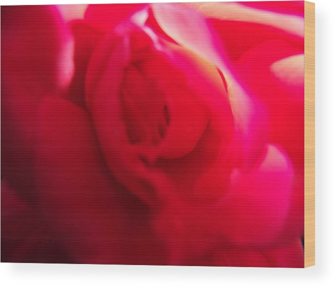 Red Wood Print featuring the photograph Rose Swirl by Nicole I Hamilton