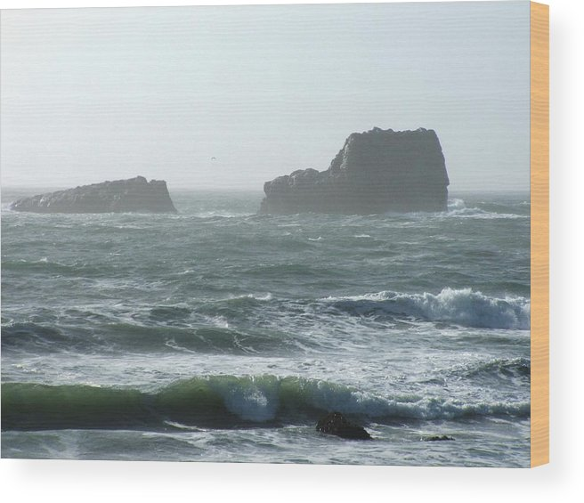 Oceanes Wood Print featuring the photograph Rough Waters by Shari Chavira