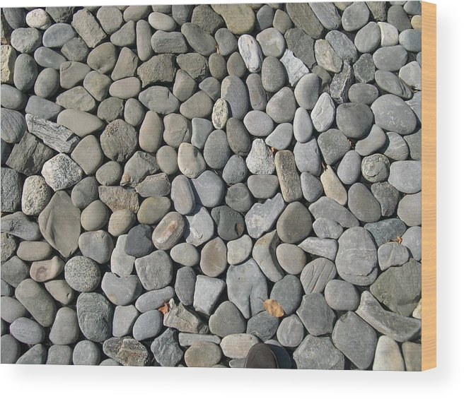 Rocks Wood Print featuring the photograph Rye Rocks by Rebecca Marona