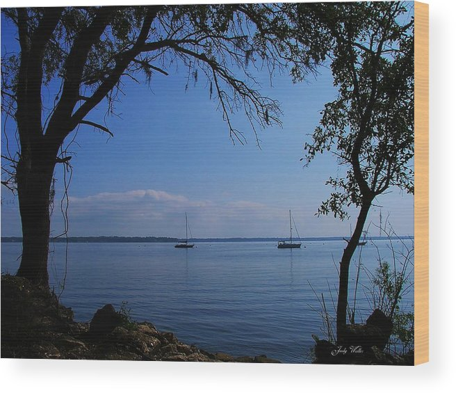 Trees Wood Print featuring the photograph Sail Boats On The Bay by Judy Waller