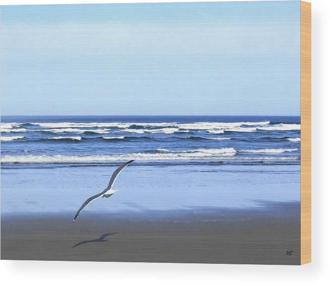 Seagull Wood Print featuring the photograph Shadow On The Sand by Will Borden