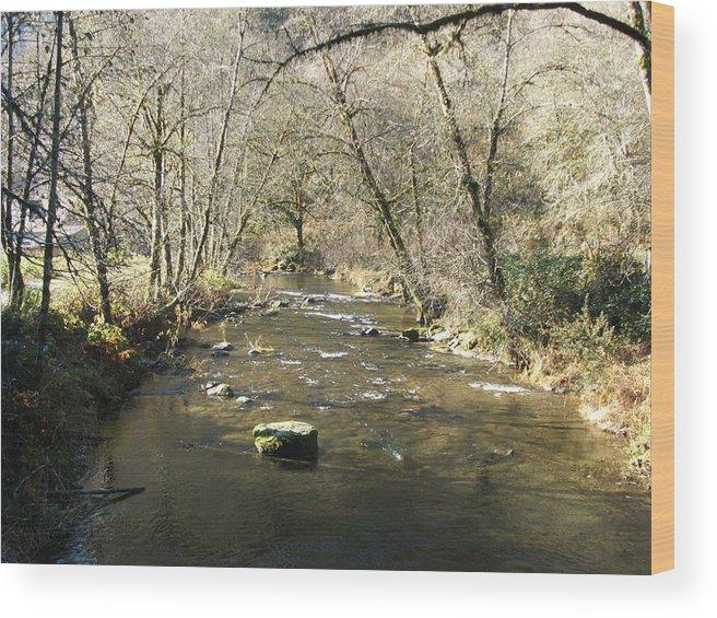 River Wood Print featuring the photograph Sleepy Creek by Shari Chavira