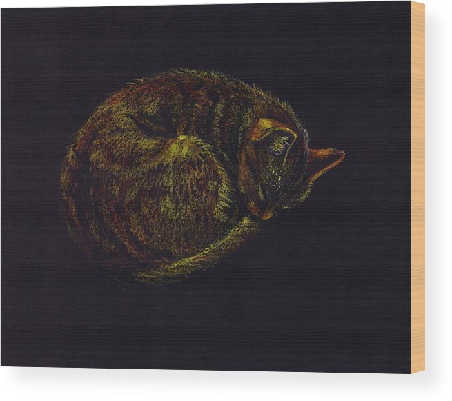 A Cat Soundly Asleep-oil Pastel Wood Print featuring the painting Sound Asleep II by Mui-Joo Wee
